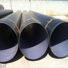 娄底排污管道&TPEP部标防腐钢管图片