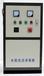 供應晟源WTS-2A水箱自潔消毒器