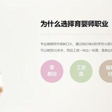 上海育婴师培训-专业提供家政保姆育婴师月嫂-晨忞家政