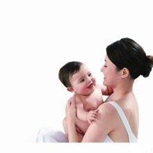 (上海虹口)专业提供家政服务人员月嫂育婴师保姆