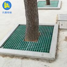 河北销售城市绿化护树网格板格栅图片