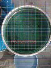 武威乙烯基玻璃鳞片涂料批发价格图片