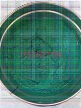 黄南乙烯基玻璃鳞片涂料适用范围图片
