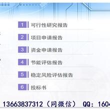 阿坝县写可行性报告公司-本地(立项申请)写可研图片