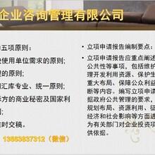 邹平县做立项报告-项目立项-申请立项的报告图片