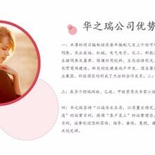 泗洪县做投标书公司-做高端标书专业标书专业收费图片