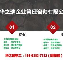 辽中县当地做立项申请报告/报告范文图片