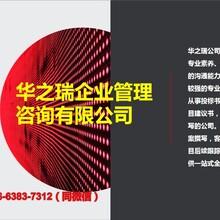 漳浦县做标书公司-(专业做标书全方位指导投标)图片