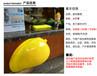 杭州晶尚雕塑:仿真芒果雕塑—杭州雕塑—杭州玻璃鋼--園林商場擺件
