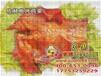 泉州电烤鸡架质量可靠公司网站