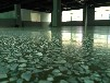 供應湖南永州水泥滲透劑郴州水泥地鋼化劑張家界岳陽混凝土密封固化劑