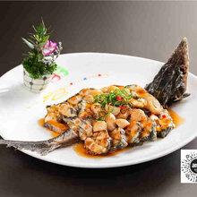 专业美食菜品摄影拍摄公司餐牌设计制作印刷酒楼拍摄