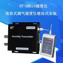 HT-LH318壁掛式煙氣濕度儀圖片