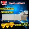 银鹰YQX-650A型臭氧气泡洗菜机叶类清洗机