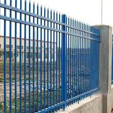 产品展示锌钢护栏铝艺护栏铁艺围墙护栏铁艺护栏定制,铁艺围栏,围墙栏杆图片