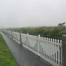 道路绿化带围栏三门峡绿地草坪护栏景区花园护栏图片