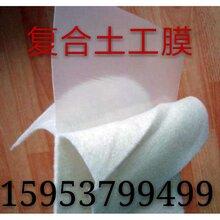 复合土工膜批发的特性以及作用价格批发复合土工膜两布一膜报价图片