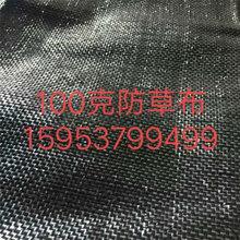 白色编织布_黑色编织布批发_编织布厂家现货供应图片