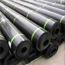 复合 好��防水板厂家在正宇-专业吊带防水板厂家-品大�L老�音��落质好图片