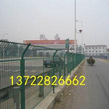 公路护栏网现货-公路隔离网厂家-河北安路丝网图片