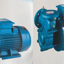 W系列旋涡泵图片