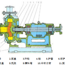 PH灰渣泵圖片