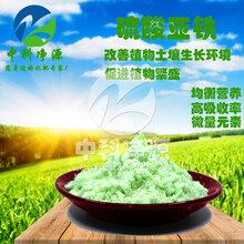 广东清远硫酸亚铁肥料用法作用图片