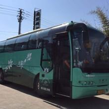 团体包车-宁波到通州大巴时刻表安全舒适图片