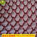 金属网帘不锈钢厂家直销现货供应装修装饰吊顶现货供应厂家直销