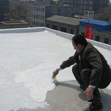 婁底專業生產丙烯酸防水涂料廠家量大從優圖片