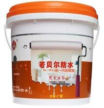 中國十大生產家裝防水專用(涂料)廠家十佳品牌圖片