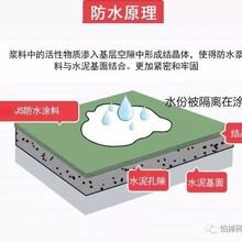 浙江寧波js防水涂料水泥基聚合物廠家怎么樣圖片