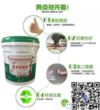 江蘇無錫js防水涂料水泥基聚合物廠家批發圖片