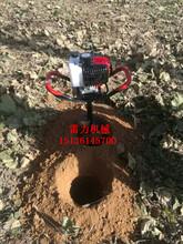 小型单人手提式挖树窝钻孔机多功能地钻机农家种树神器图片