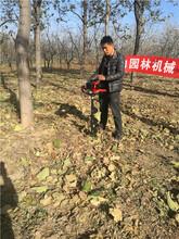 单人手提式高配置地钻打孔机小型挖树窝转土机厂家促销图片