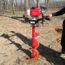 单人手推式螺旋地钻机种树挖坑钻洞真方便快速图片