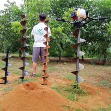 栽树机就选雷力品牌挖坑机经济实用图片