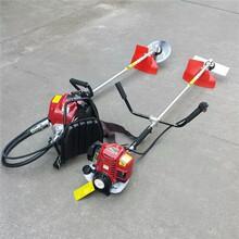 厂家推荐农家收割利器雷力品牌割草机实用又高效图片