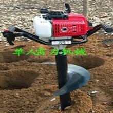 手扶挖树窝机器地面钻孔设备汽油式栽树挖坑机厂家大促图片