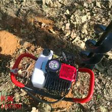 小型手提式挖坑机价格优质轻便式植树挖坑机图片