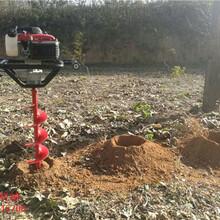 手提式小型挖坑机多功能植树挖坑机厂家直销图片