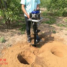 新款便携式小型手提式挖坑机多功能电线杆挖坑机图片