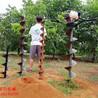 郴州便携式取土钻机