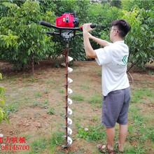 浙江省台州市耐用性超强植树打孔机图片