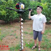 淮北市种树神器种树挖坑机图片