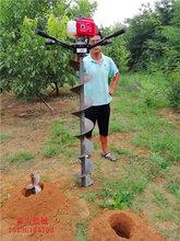 畢節市種樹神器防護欄打樁鉆孔機圖片