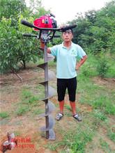 内江市专业打桩设备种树挖坑机图片