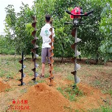 广安市坚固耐用植树转土机图片