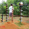 明溪县防护栏打桩机