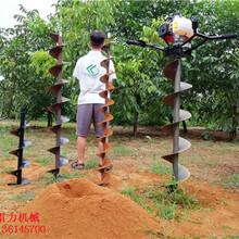 连云港市东海县坚固耐用电线杆挖坑机图片